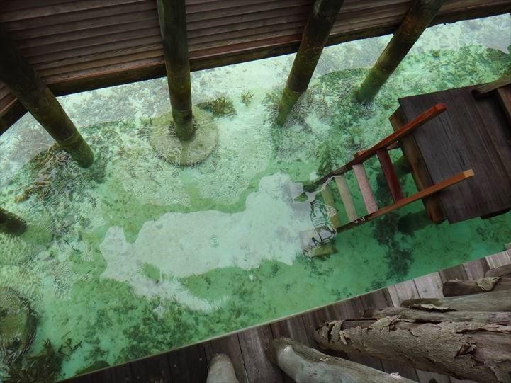 ギリランカンフシ 海に下りる階段
